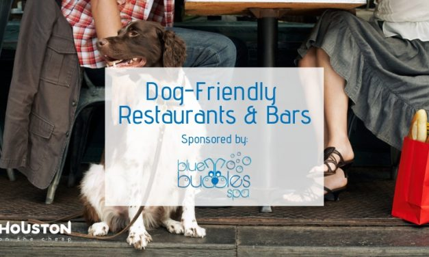 The Best Dog-Friendly Restaurants and Bars in Houston