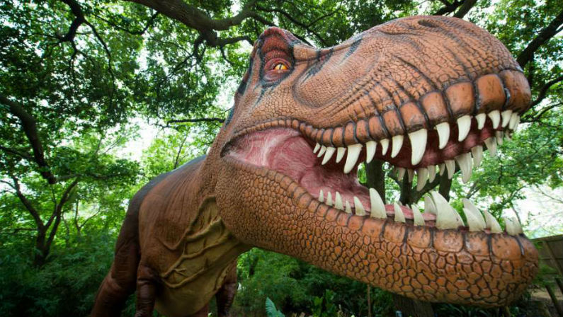 See T. Rex Come to Life at DINOSAURS at the Houston Zoo