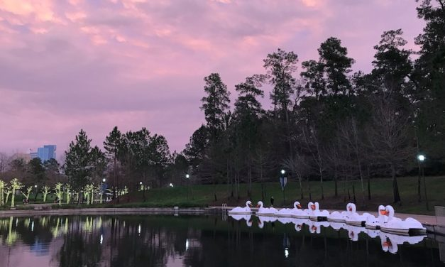10 Fun Things To Do in The Woodlands: Best Activities And Attractions